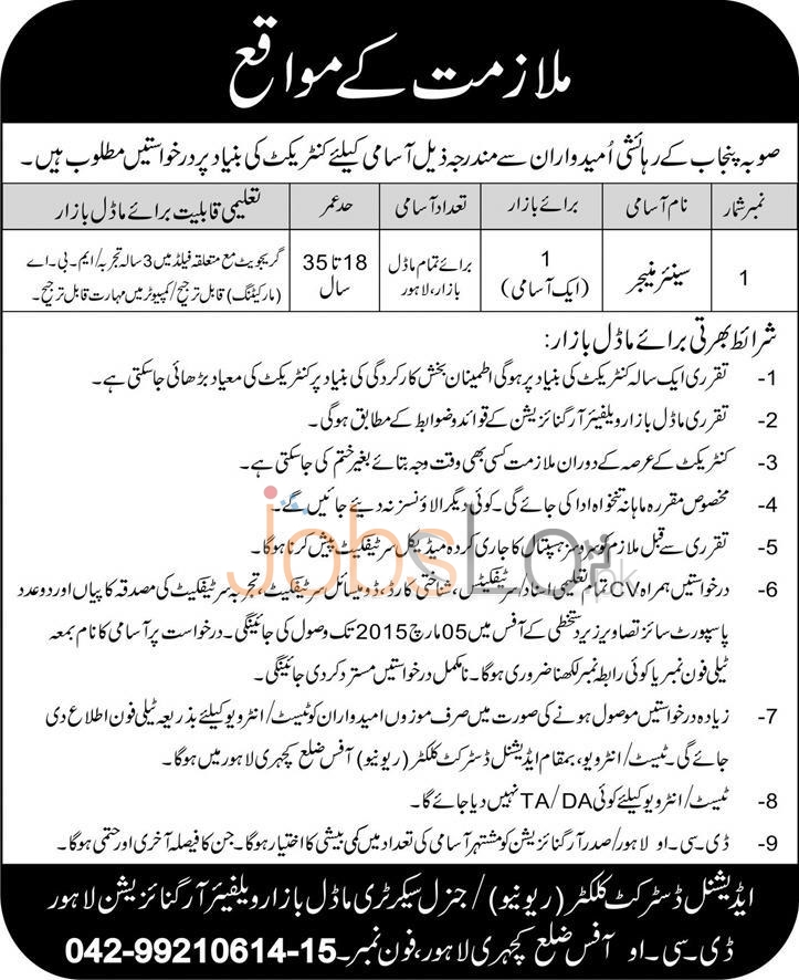 Model Bazaar Welfare Organization Lahore Jobs