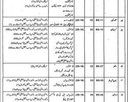 Mines and Minerals Department Punjab Jobs 2019 Pakistan Latest Vacancies