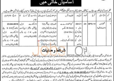 Govt of Punjab Population Welfare Department Jobs 2015 Theatre Nurse Female
