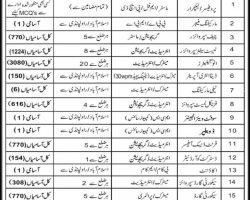 Islamabad Testing Service Jobs 2019 ITS Invigilators Application Form Latest
