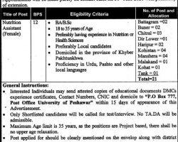 PO box 777 Peshawar Jobs 2019 Govt of KPK Current Openings