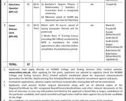 Ministry of Law & Justice Pakistan Jobs 2019 Application Form Download   www.molaw.gov.pk