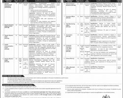 Ministry of National Health Services Regulations & Coordination Jobs 2019 OTS Application Form Download