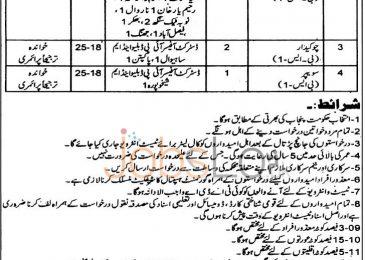 Directorate of Industries Punjab Lahore Jobs 2015 May 28 Advertisement