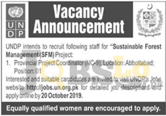 UNDP Pakistan Jobs 2019 Online Apply | United Nations Development Program Latest