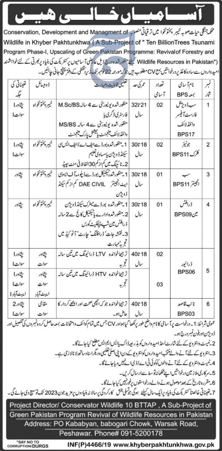 Wildlife Department KPK Jobs 2019 in Peshawar Swat Abbottabad for Junior Clerk