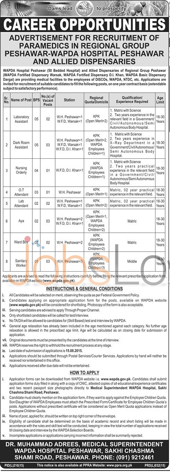 WAPDA Hospital Peshawar Jobs
