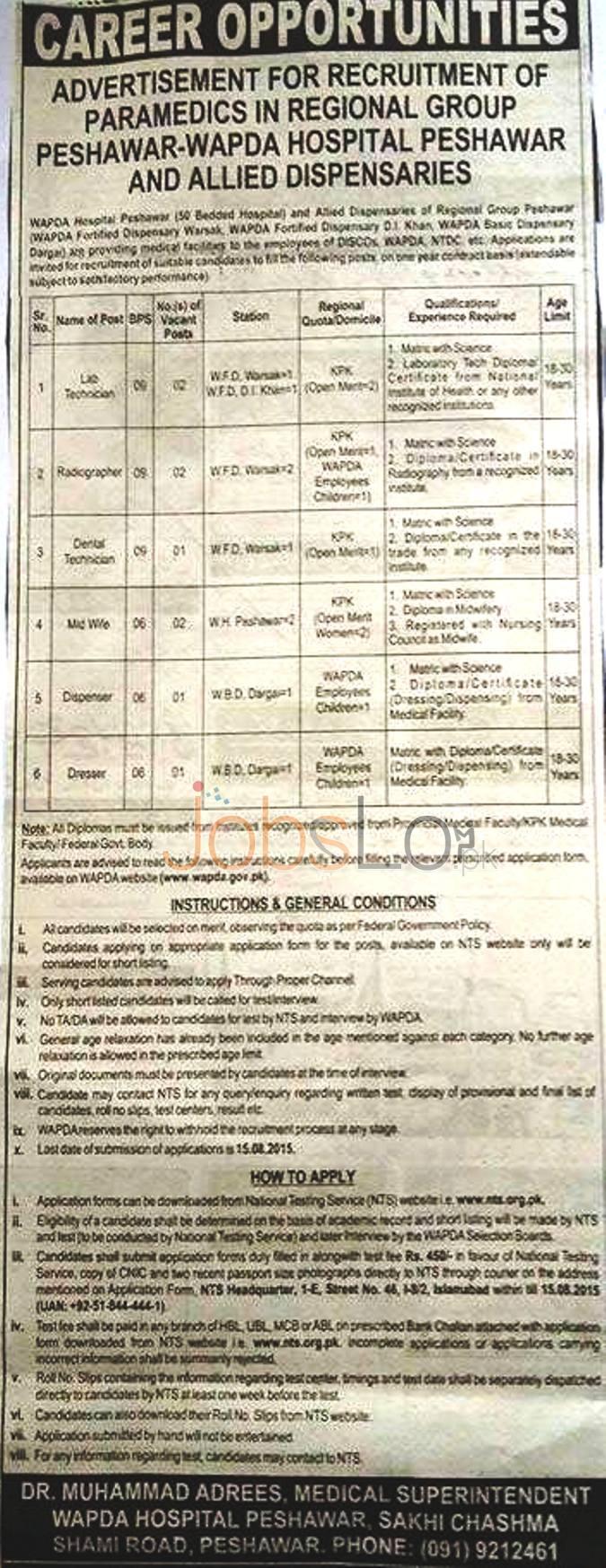 WAPDA Hospital Peshawar NTS Jobs 2015 Application Form