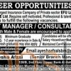 EFU Life Insurance Limited Jobs in Rawalpindi 2016 of Unit Manager/Consultants