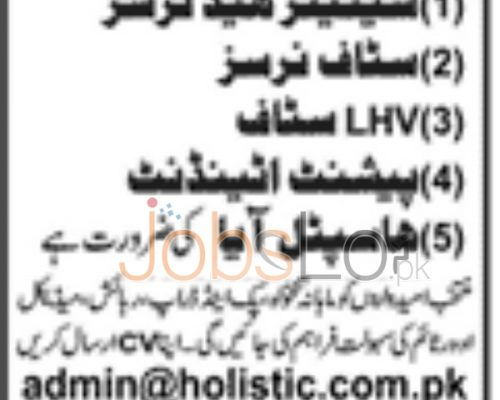 Holistic Health Care Company Job Opportunities in Lahore 2016