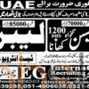 Staff Required in Saudi Arabia 2016 for Tile Labour & Mason