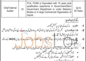 Gujranwala Electric Power Company (GEPCO) Jobs 2016 for Dir General & Chief Internal Auditor