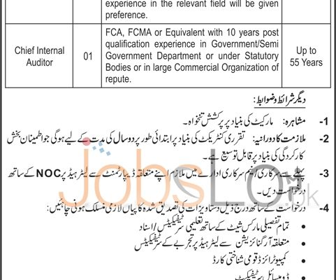 Employment Offers for Director General & Chief Internal Auditor 12 March 2016 in GEPCO