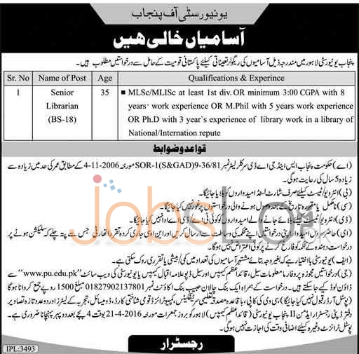 University of Punjab Job