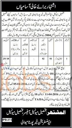 Tehsil Municipal Administration Khaipur Jobs