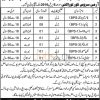 262 Supply Platon Army Services Core Loralai Cantt Jobs 2016 Latest