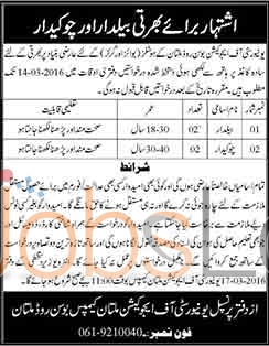Recruitment Offers in  University of Education 2016 in Multan Eligibility Criteria