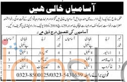 Defence Department Jobs