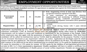 Land Record Management & Information Systems Punjab Jobs 2016 On Contract Basis