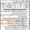 Social Welfare & Bait-ul Maal Department Kasur Jobs April 2016 Test & Interview Date
