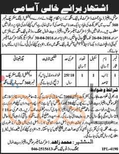 Social Welfare Department Toba Tek Singh Jobs April 2016 For Naib Qasid Latest