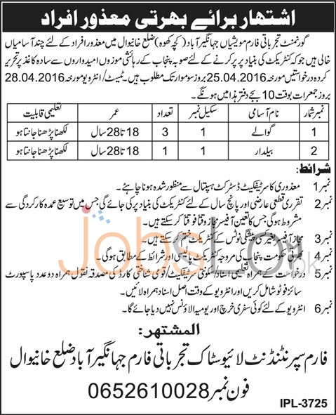 Govt Experimental Animal Farm Jahangirabad, Distt Khanewal Jobs