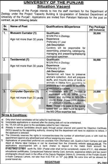 University of Punjab Job 2016 For Computer Operator Application Form Download Online