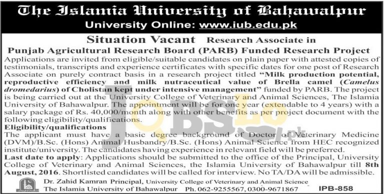 Islamia University Bahawalpur Jobs 2016 Latest Employment Opportunities
