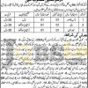 Provincial Building Division Lahore Jobs 29 July 2016 Test & Interview Date