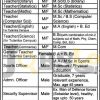Teaching & Non-Teaching Staff Jobs 2016 in Divisional Public School & College Mian Channu