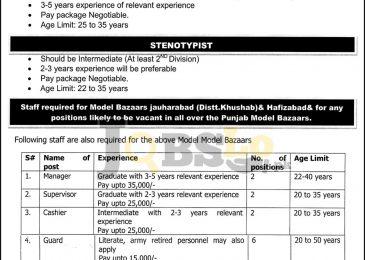 PMBMC Jobs 2016 Punjab Model Bazar Current Employment Opportunities