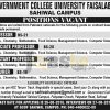 GC University Faisalabad Sahiwal Campus Jobs 2016 Apply Online Latest