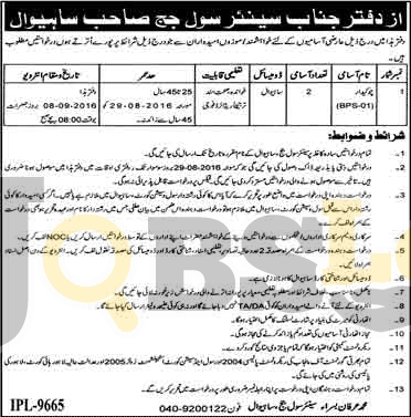 Civil Court Jobs