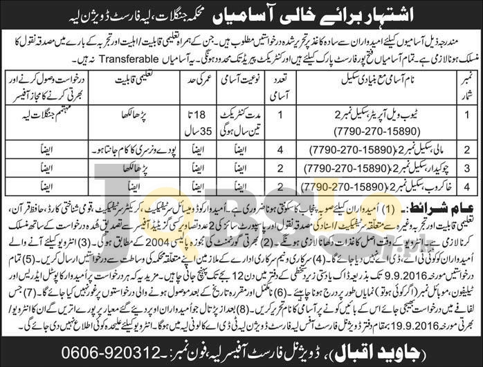 Forest Department Layyah Jobs