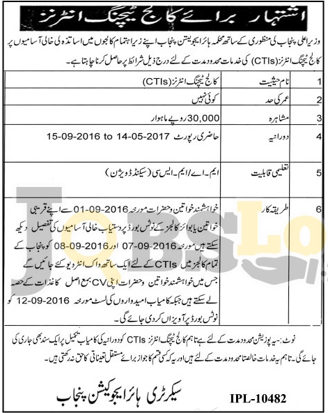 Higher Education Department Punjab Jobs