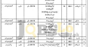 Quality Control Laboratories Food Department Punjab Jobs