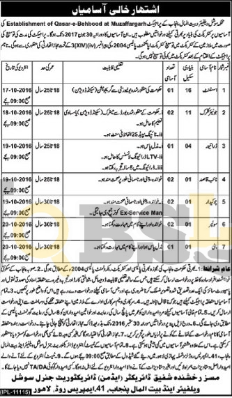 Social Welfare Dpt Jobs