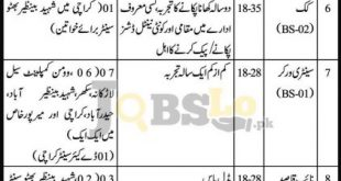 Women Development Department Sindh Jobs