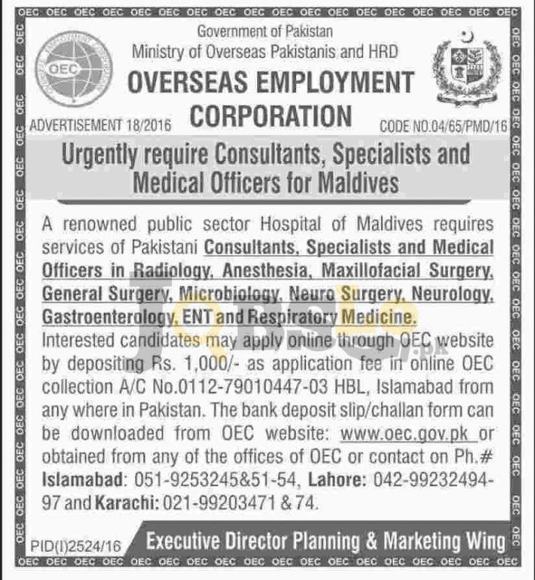 Overseas Employment Corporation Maldives Jobs 2016 Current Vacancies