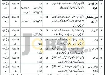 Pakistan Army Ammunition Depot Niaz Baig Lahore Jobs 2016 Career Offers
