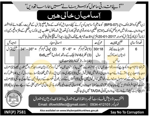 Wildlife Division Chitral Jobs