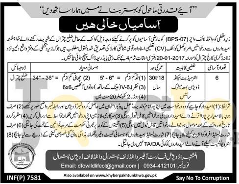 Wildlife Division Chitral Jobs