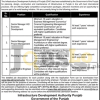 IDAP Jobs 2017 Latest Infrastructure Development Authority Punjab