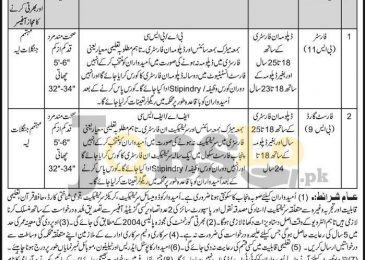 Forest Department Layyah Jobs 2017 For Forester Eligibility Criteria