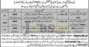 Pakistan Edification Services Punjab Jobs