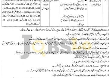 PEF Punjab Jobs 2016-17 For District Monitoring & Evaluation Online Form Download