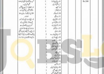 Population Welfare Department Hafizabad Jobs 2016 For Community Based Planning Workers (Female)