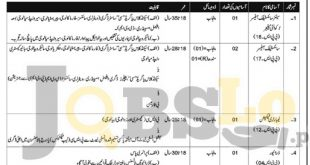 National Veterinary Laboratory Islamabad Jobs