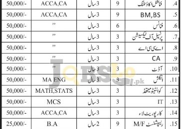 School of Accountancy Jobs Islamabad, Lahore & Karachi 2017 JTS Form Download