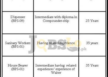 Cadet College Larkana Jobs 2017 Jan Add for BPS-17 To BPS-01